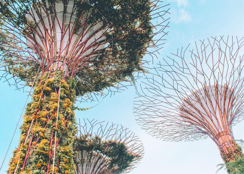 Supertree Grove, Bay South Garden Singapore