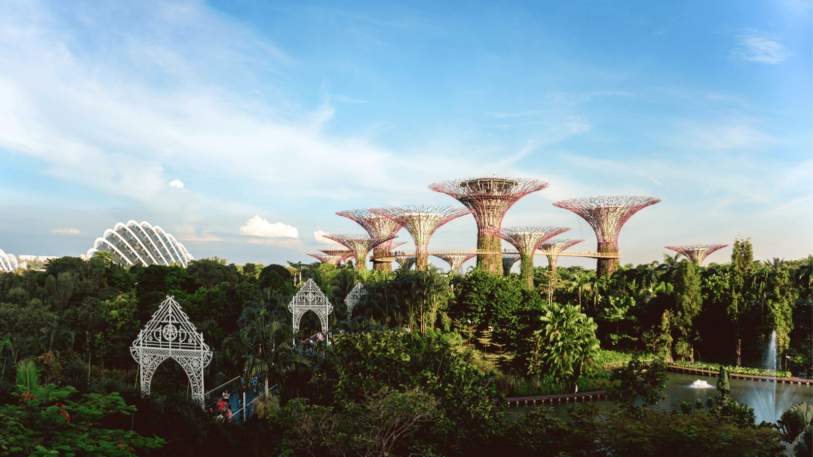Explore the natural world at Gardens by the Bay in Singapore
